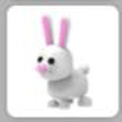 bunny pet adopt me