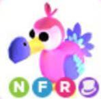 DODO LEGENDARY ADOPT ME PET NFR