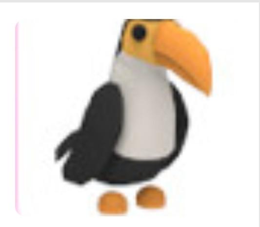 Toucan-pet adopt me