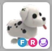 Dalmatian FR | Adopt me