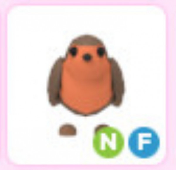 NF Robin adopt me pet from Christmas 2019