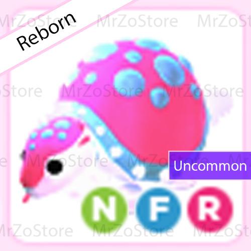 Glyptodon Adopt Me Pet / Pet Adopt Me - NFR