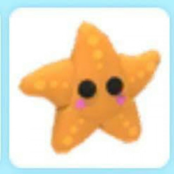 Pet Starfish <New Born>