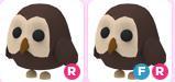 Owl Random R / FR - Adopt Me