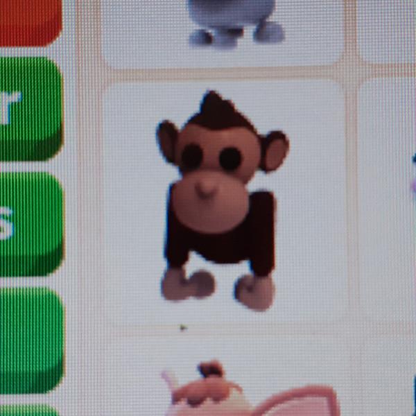 Monkey-Adopt Me