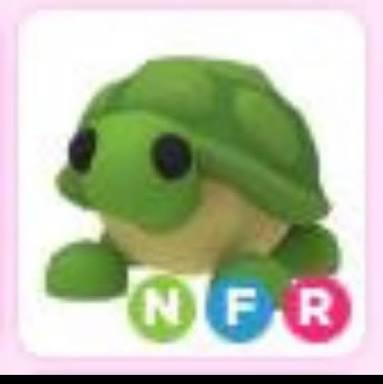 NFR TURTLE (ADOP ME)