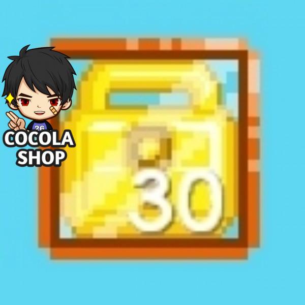 30 World Lock (Termurah)
