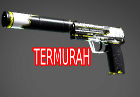 USP-S   Torque (Mil-Spec Grade Pistol)