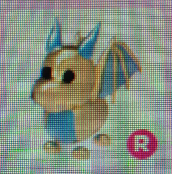 Gold Dragon R (Ride) - Adopt Me