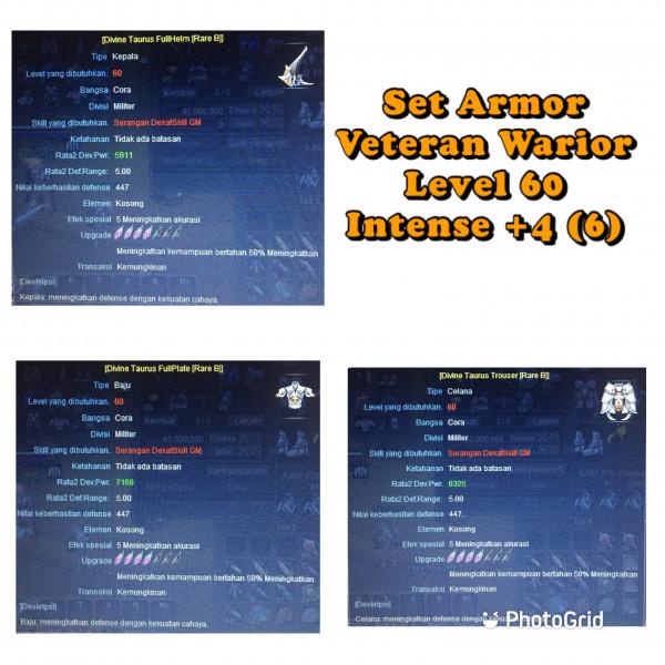Set Armor WR int +4