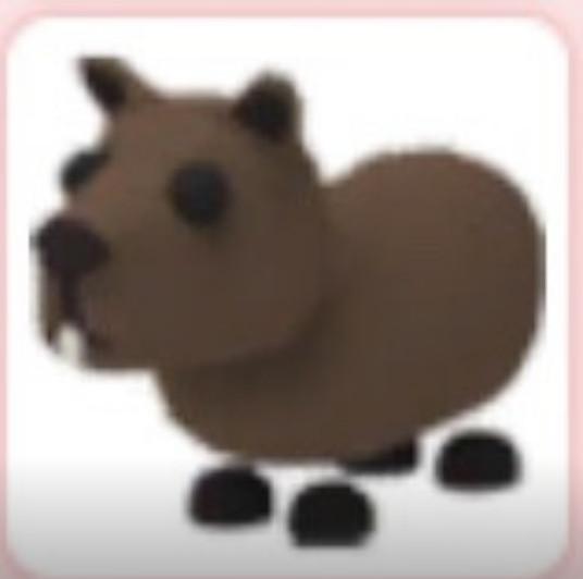 Normal Capybara Adopt me (LANGKA)