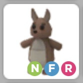 Kangaroo NFR - Adopt Me