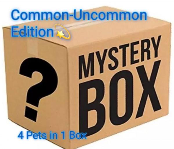 Mystery Box Common/Uncommon Adopt Me