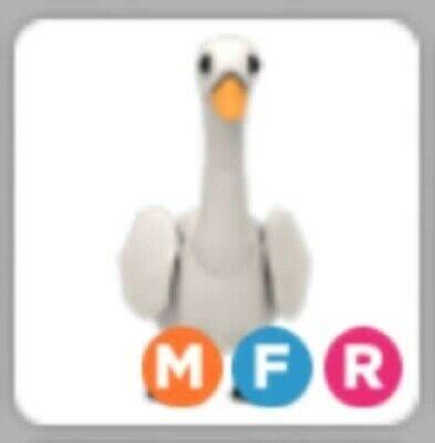 Mega noen swan MFR