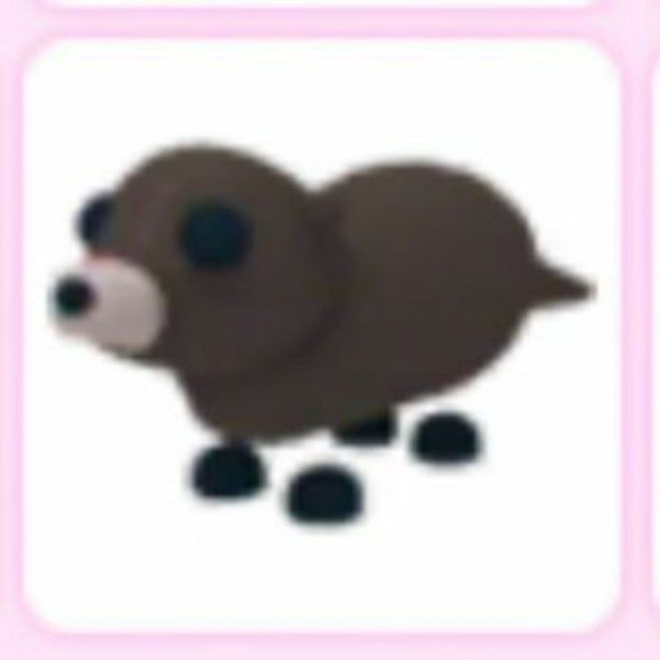 Otter Adopt Me Pets