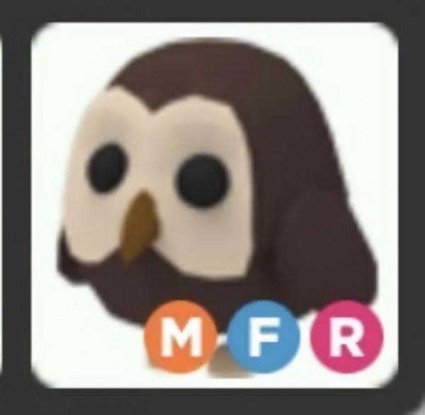 OWL ( MFR ) - ADOPT ME