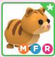 MFR Ginger Cat - Adopt Me
