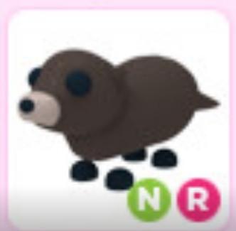 NR Otter