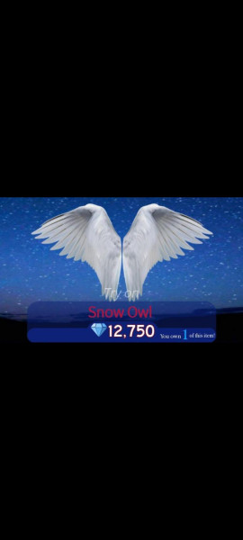 Snow owl wings | Royale High