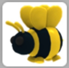 Normal king bee (full grown)