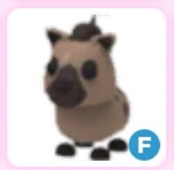 Fly hyena langka