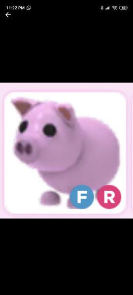 FR Pig langka