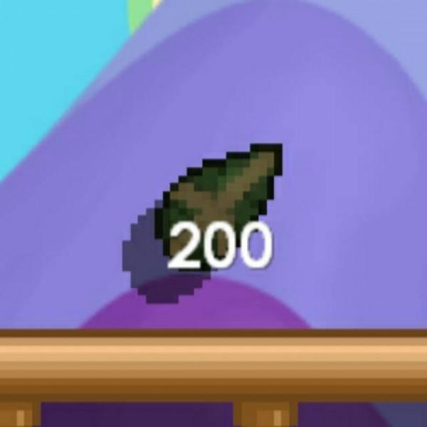 Pepper Tree Seed - 200