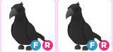 FR Crow 2x Adopt Me